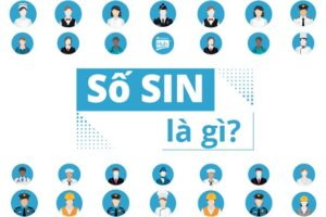 Vietnam Admission Hub - Tìm hiểu về số SIN